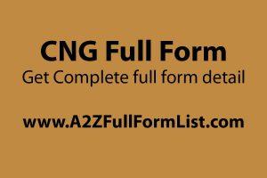 PNG full form, LPG full form, CNG full form in road construction, CNG full form in punjabi, CNG full form in gujarati, LNG full form, CNG vehicles, CNG price,