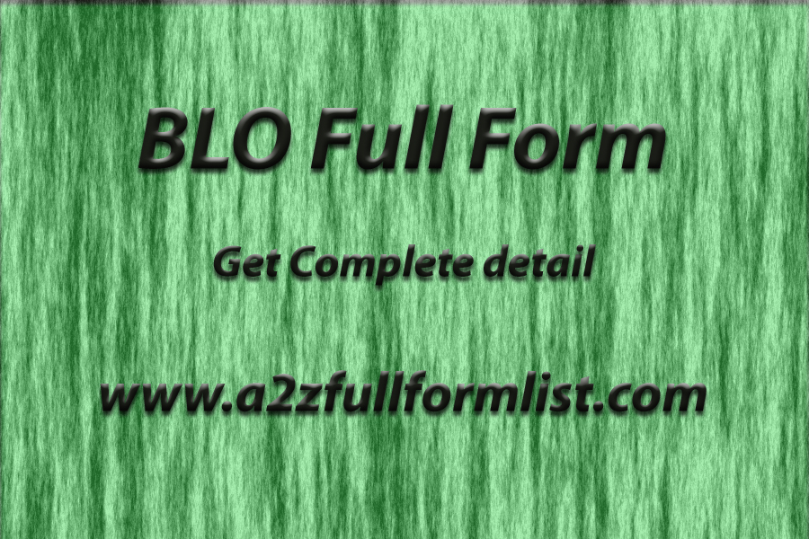 BLO Full Form, Booth Level Officer